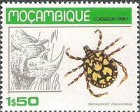Mozambique 1980 Ticks from Mozambique b