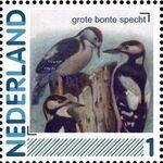 Netherlands 2011 Birds in Netherlands a18