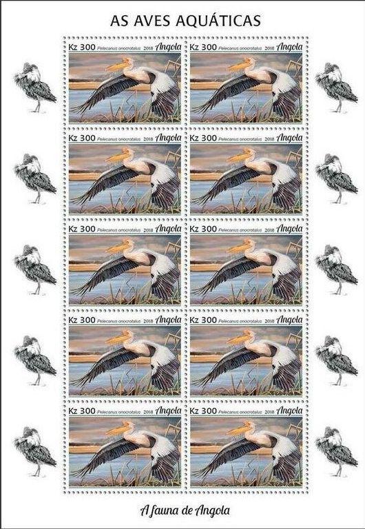 Angola 2018 Wildlife of Angola - Water Birds Sc
