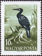 Hungary 1959 Water Birds a