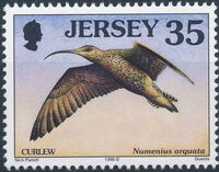 Jersey 1998 Seabirds and waders (3rd Issue) f