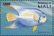 Mali 1997 Marine Life k