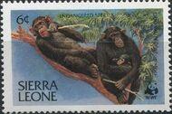 Sierra Leone 1983 WWF - Chimpanzees from Outamba-Kilimi National Park a