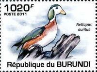 Burundi 2011 Birds of Burundi b