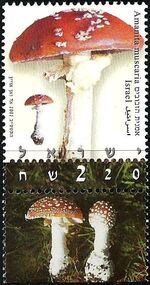 Israel 2002 Mushrooms b
