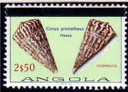 Angola 1981 Sea Shells Overprinted d