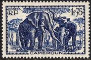 Cameroon 1939 Pictorials v