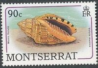 Montserrat 1988 Sea Shells i