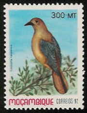 Mozambique 1992 Birds of Moçambique (4th Issue) c