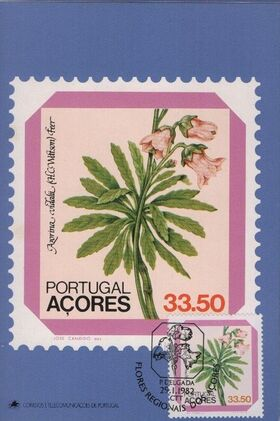 Azores 1982 Azores Flowers (2nd Issue) k