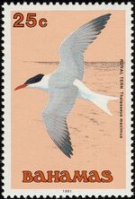 Bahamas 1991 Birds e