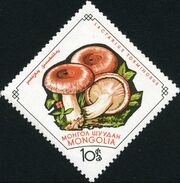 Mongolia 1964 Mushrooms b