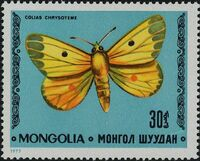 Mongolia 1977 Butterflies and Moths c