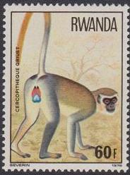 Rwanda 1978 Apes g