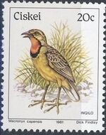 Ciskei 1981 Definitive - Birds l