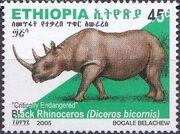 Ethiopia 2005 Black Rhinoceros i