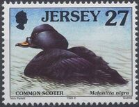 Jersey 1999 Seabirds and waders (4th Issue) b