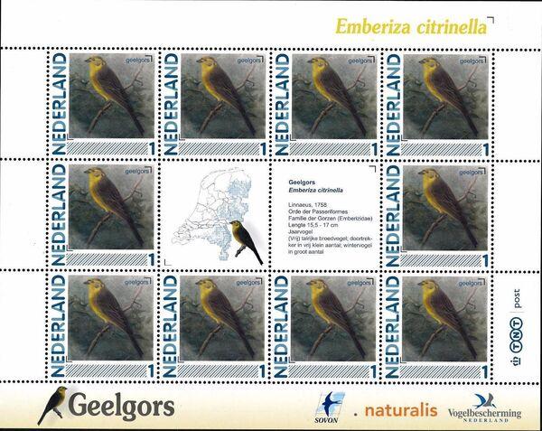 Netherlands 2011 Birds in Netherlands MS14