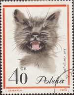 Poland 1964 European Cats b