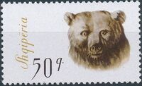 Albania 1965 Brown Bear f