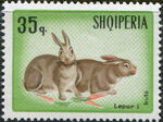 Albania 1967 Hares and Rabbits d