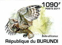Burundi 2011 Owls of Burundi f