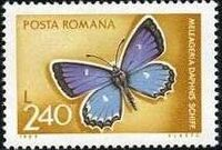 Romania 1969 Butterflies h