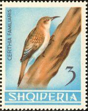 Albania 1964 Birds e