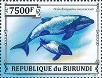 Burundi 2013 Dolphins m