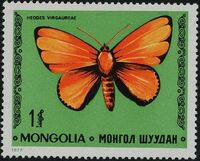 Mongolia 1977 Butterflies and Moths g