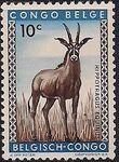 Belgian Congo 1959 Animals a