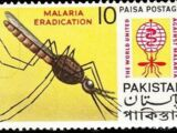 Pakistan 1962 Malaria Eradication