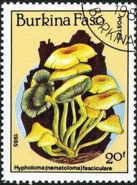 Burkina Faso 1985 Fungi b