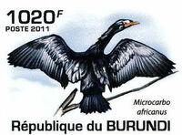 Burundi 2011 Birds of Burundi e