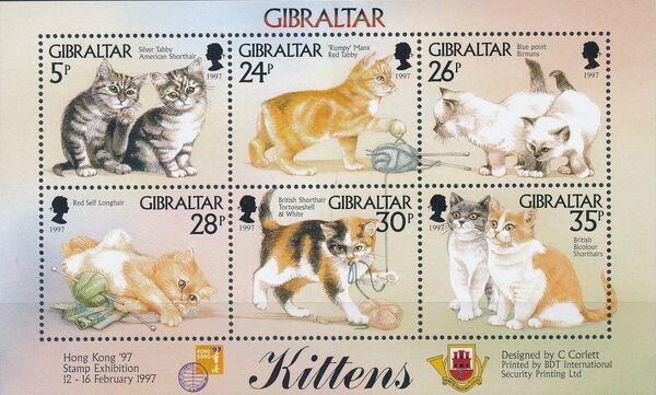Gibraltar 1997 Kittens k