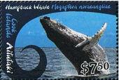 Aitutaki 2012 Whales & Dolphins k