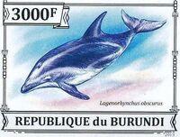 Burundi 2013 Dolphins l