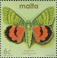 Malta 2002 Butterflies and Moths l
