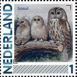 Netherlands 2011 Birds in Netherlands a7