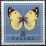 Poland 1967 Butterflies g