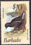 Barbados 1979 Birds r