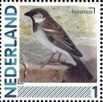 Netherlands 2011 Birds in Netherlands a25