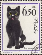 Poland 1964 European Cats j