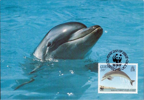 Guernsey 1990 WWF Marine Life r