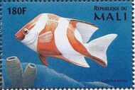 Mali 1997 Marine Life r