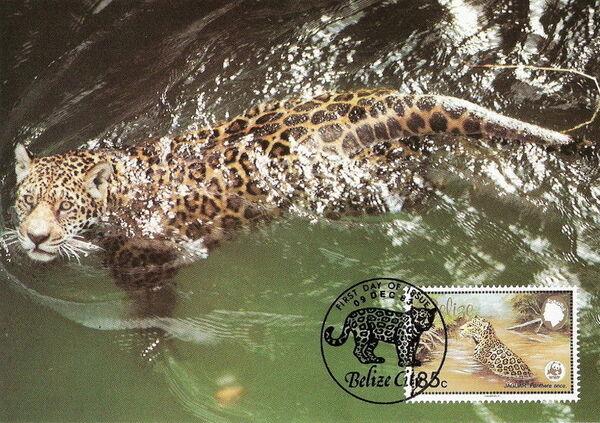 Belize 1983 WWF - Jaguar MCc