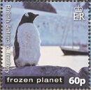 British Antarctic Territory 2011 Frozen Planet - Penguins f