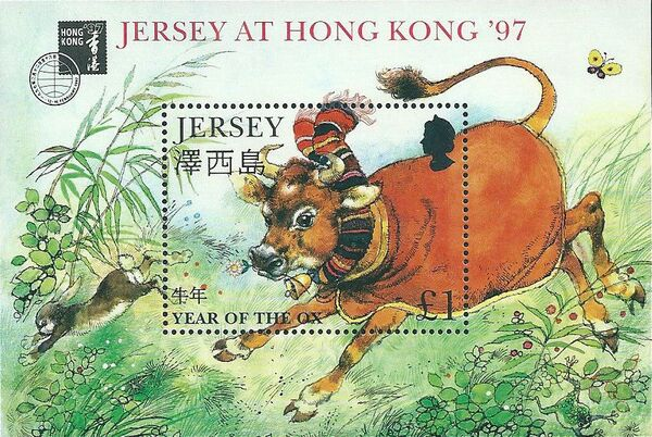 Jersey 1997 Year of the Ox h