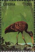 Liberia 1998 Birds of the World k