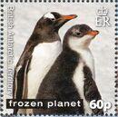 British Antarctic Territory 2011 Frozen Planet - Penguins a